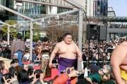 梅田で相撲イベント「うめきた場所」 豪栄道、琴奨菊ら出場
