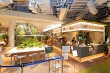 梅田のパナソニックセンター大阪に「森」カフェ  店内にチーズ工房、地産地消にこだわり