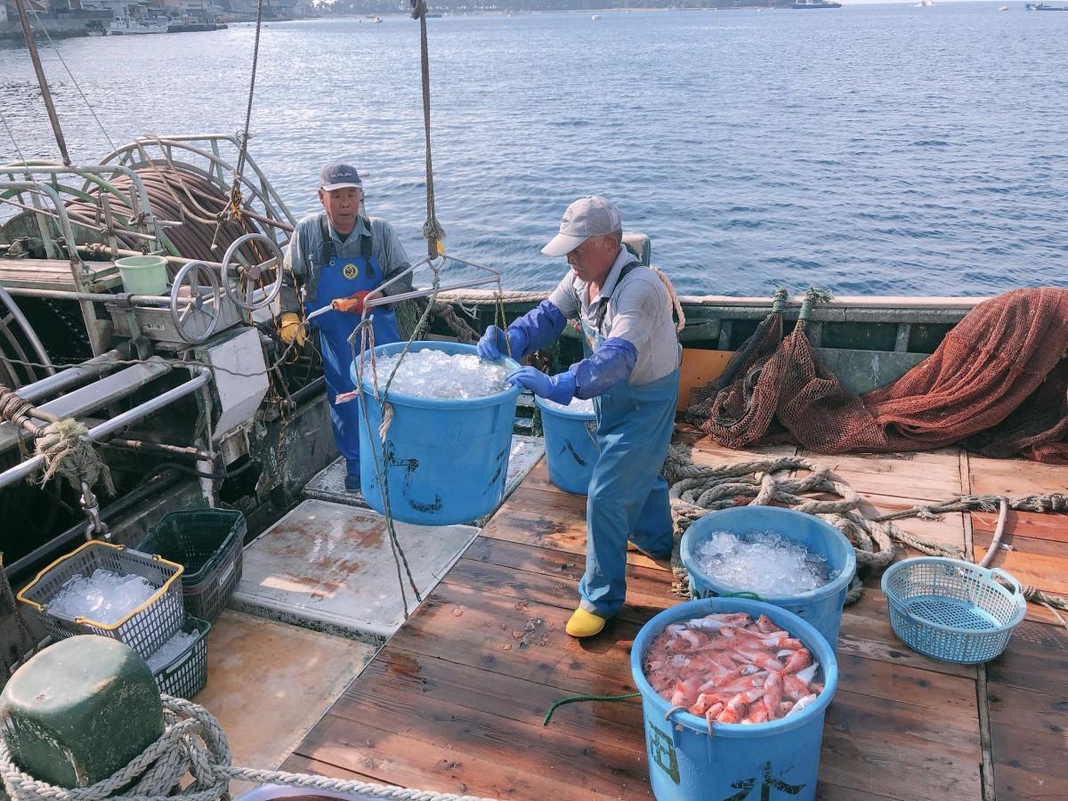 深海魚漁の様子