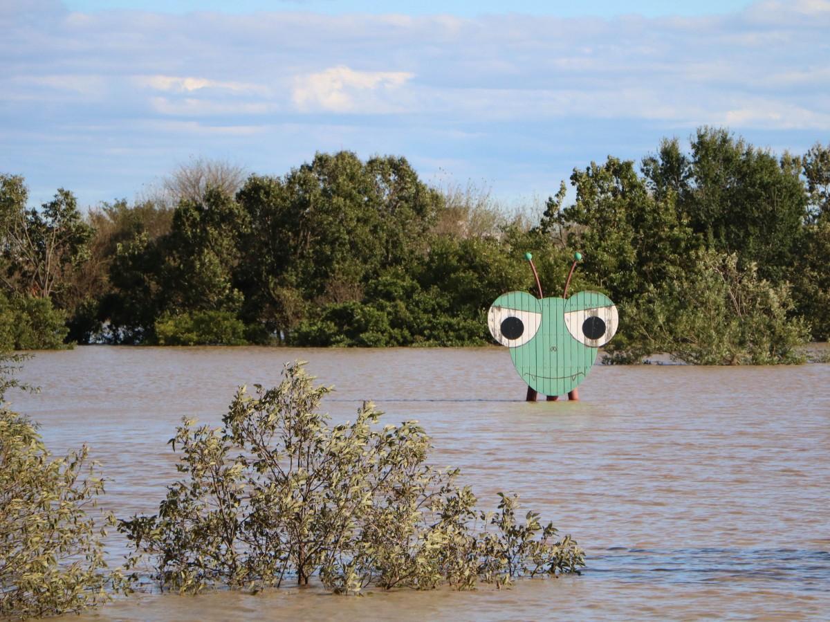 公園シンボルのカマキリ型大型遊具が頭部だけ残して水没