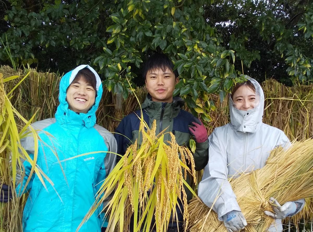 初めての有機栽培米を収穫した木曽大原さん(中央)と谷本成星さん(左)、西山花音さん(右)