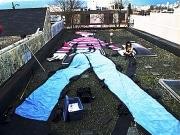 ビル屋上の「ウォーリー」を探せ-「Google Earth」で発見呼びかけ