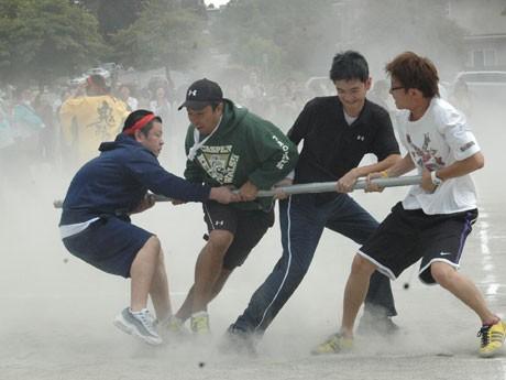 「燃えろ!日本の運動会」、棒引きで必死に競う。