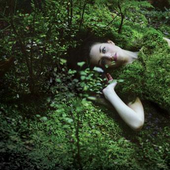 バンクーバーのNPO団体「Canopy」の森林保護活動「Fashion Loved by Forest」に「H&M」と「Zara/Inditex」が参加表明  写真提供:c.Grewal/Canopy