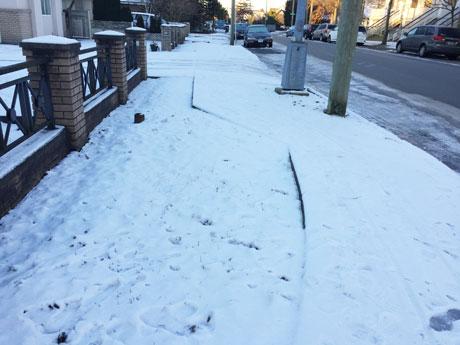 バンクーバー市が塩を無料配布 除雪作業追い付かない市民を援助