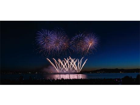 日本が2014年に優勝した際の「灯屋煙火店」の花火 (Photo= Honda Celebration of Light)