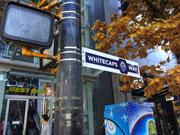 バンクーバーのロブソンストリートが「ホワイトキャップス通り」に 期間限定で