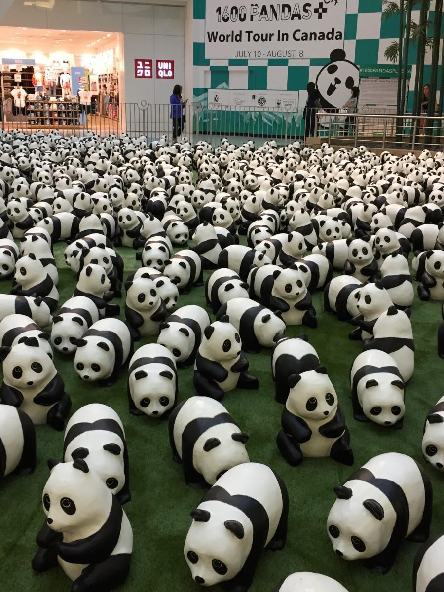 モールに登場した888頭の紙粘土製パンダ