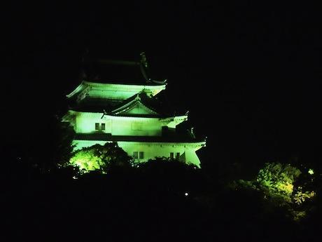 緑にライトアップされた和歌山城