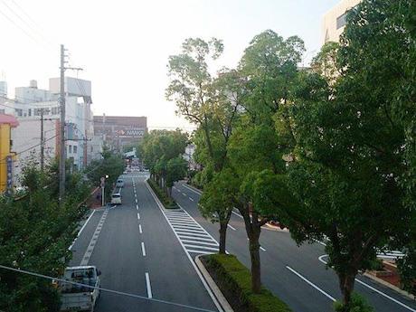 歩行者天国になる和歌山市駅前通り