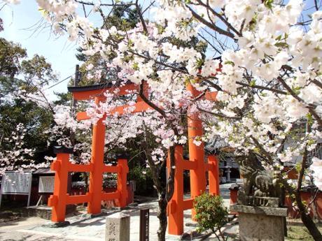 昨年の玉津島神社の様子