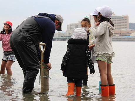 アサリの稚貝入りの竹筒を海に設置する様子