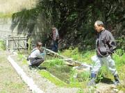和歌山・龍神村でホタル祭り 水害で消えたホタル、住民らが育てる