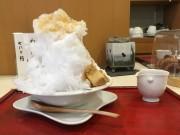 和歌山の日本茶専門店「諏訪園」でほうじ茶かき氷 昨年より1カ月早く