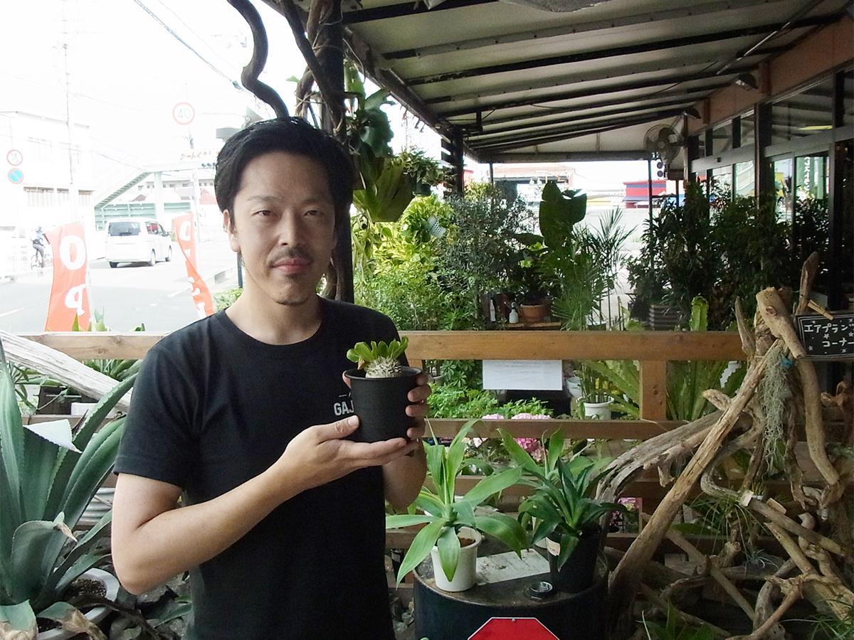 さん 観葉 植物 玉川