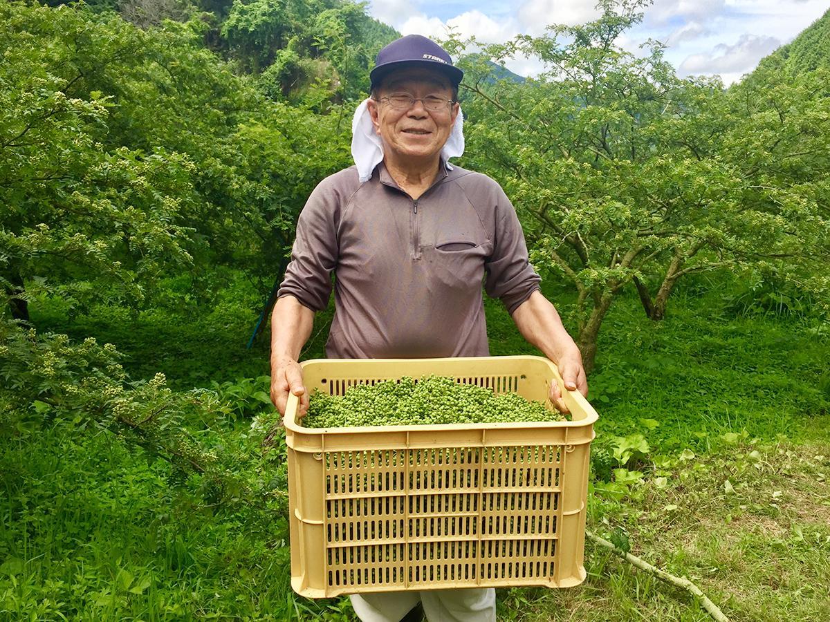 豊作の「ぶどう山椒」に笑顔の弓庭組合長