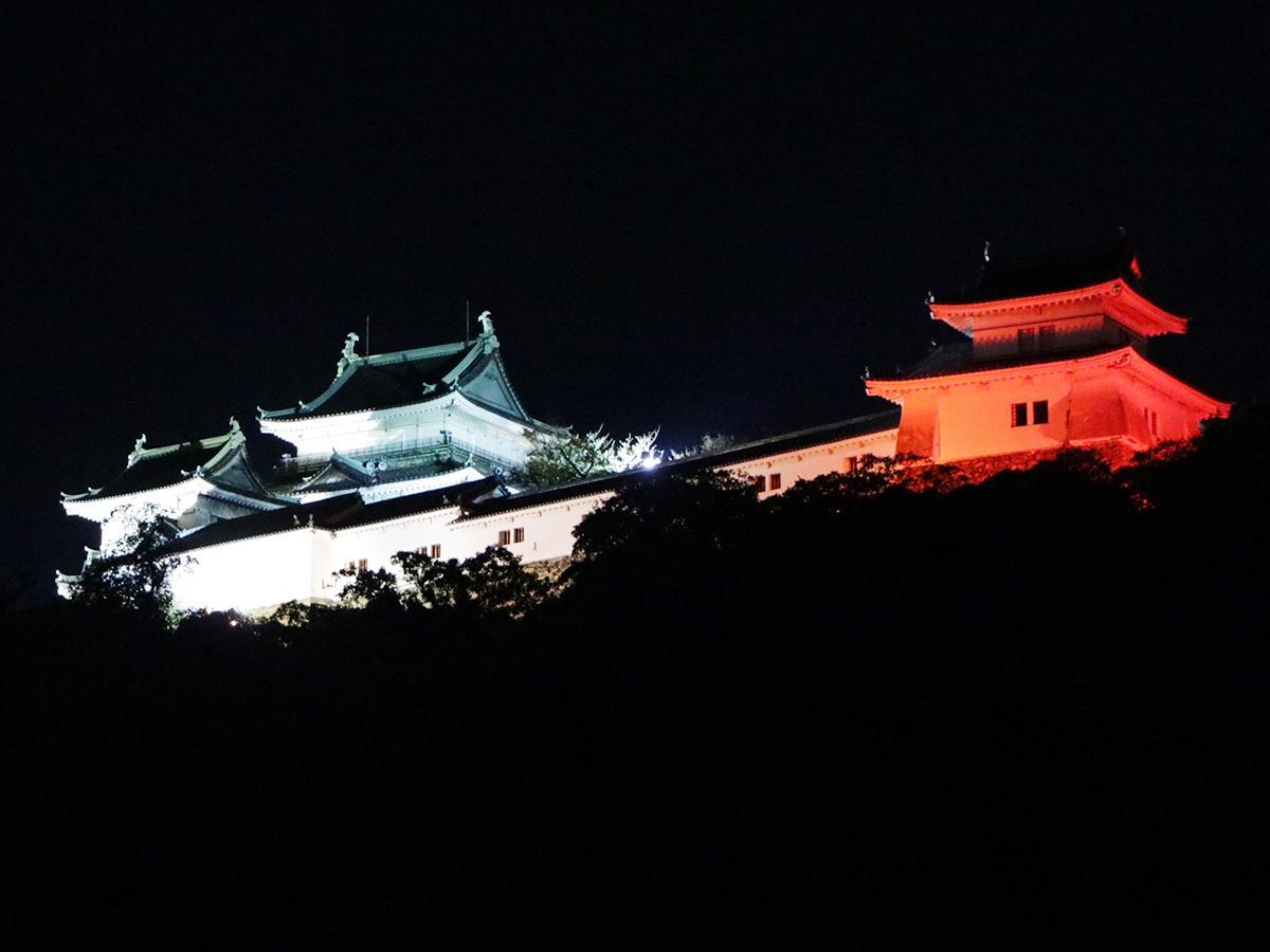 紅白にライトアップされた和歌山城天守閣