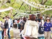 和歌山でマーケットイベント「大新ピクニック」 7組のミュージシャンが絶えず演奏