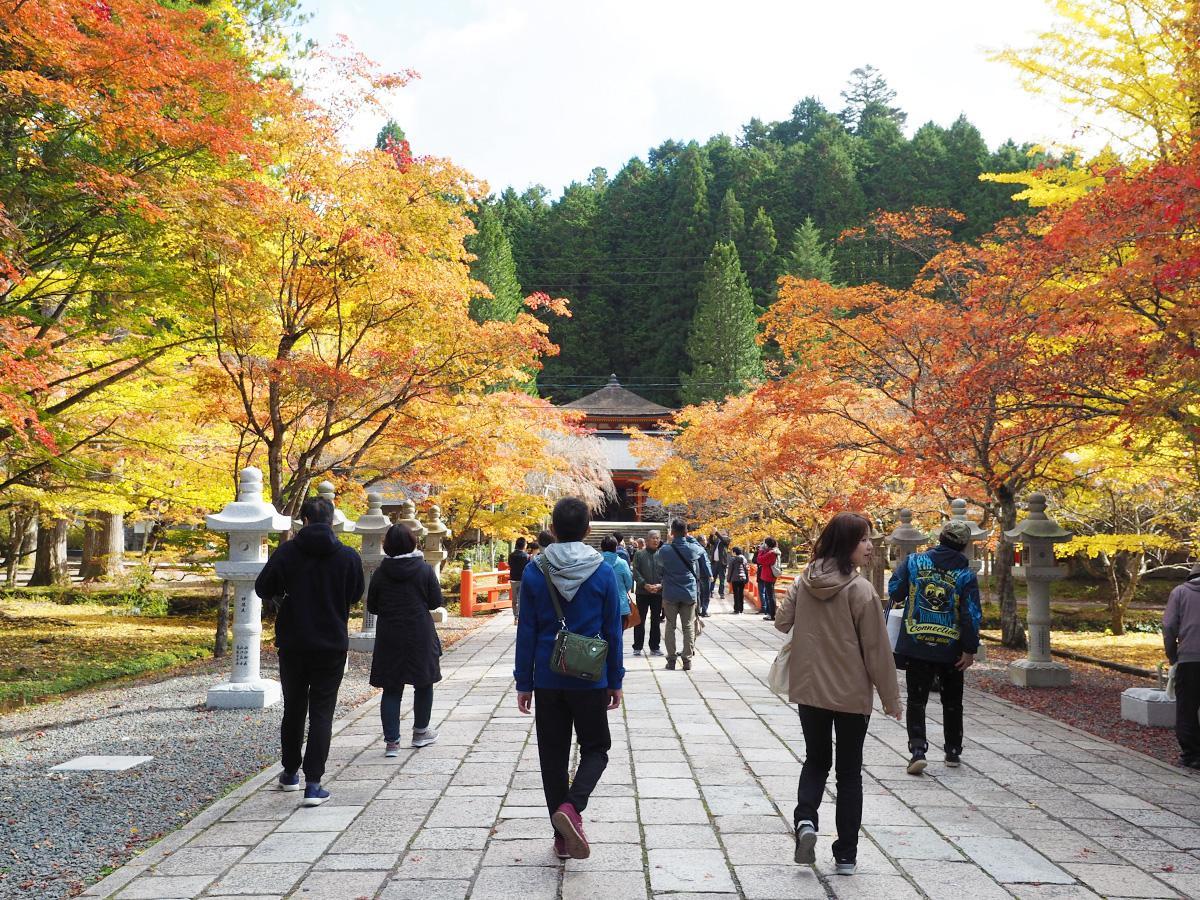 高野山奥之院の「英霊殿」付近の紅葉(11月4日撮影)