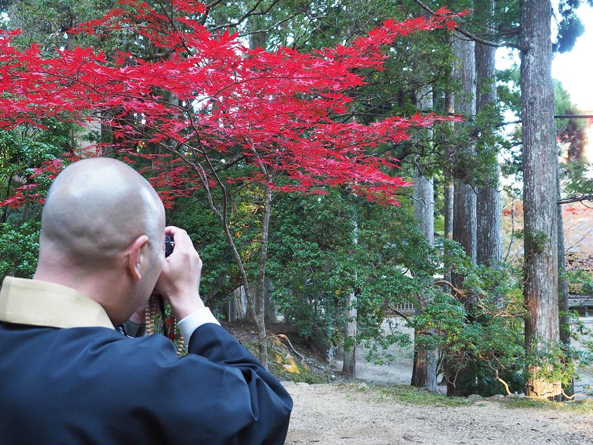 一眼レフで紅葉を撮影する高井さん