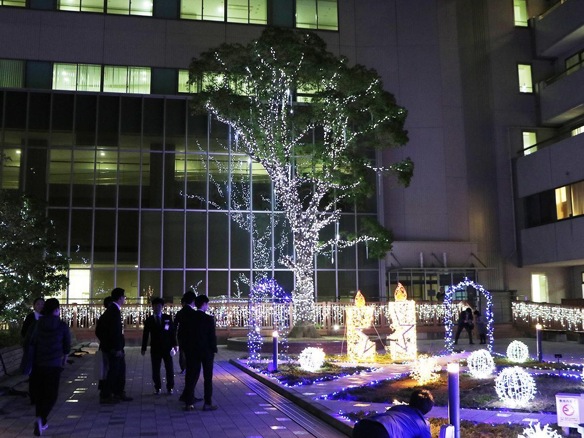 日赤和歌山医療センターの中庭「せせらぎの庭」のイルミネーション