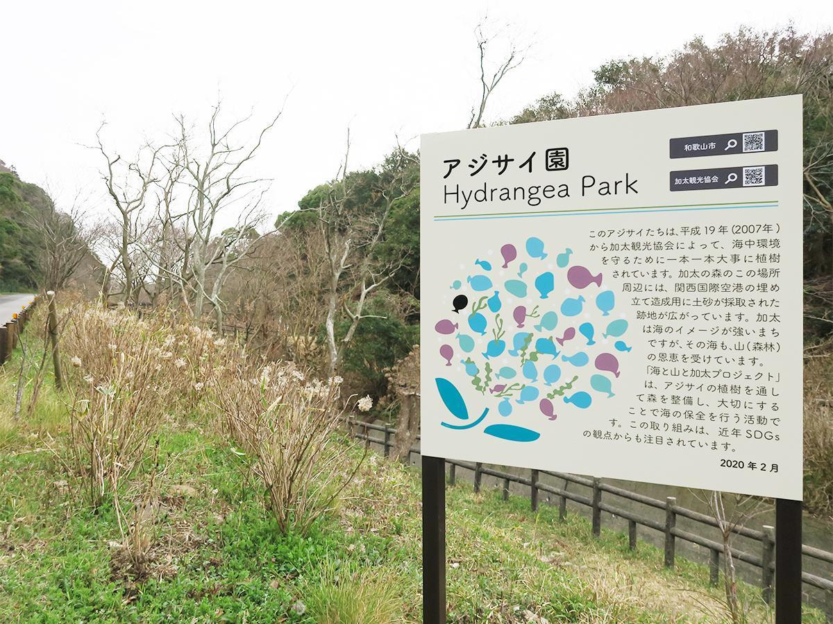 設置された「アジサイ園Hydrangea Park」の看板
