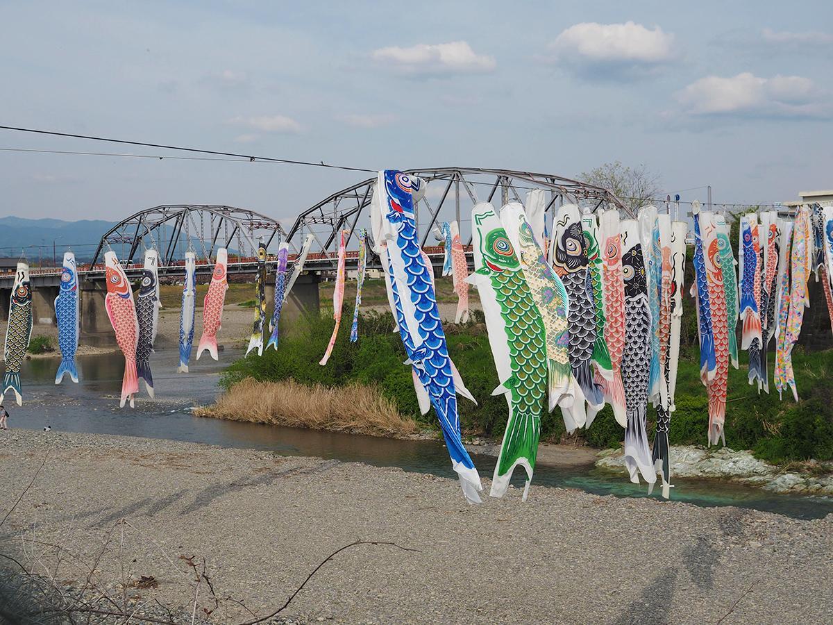 丹生川の上に掛けられた約100匹のこいのぼり