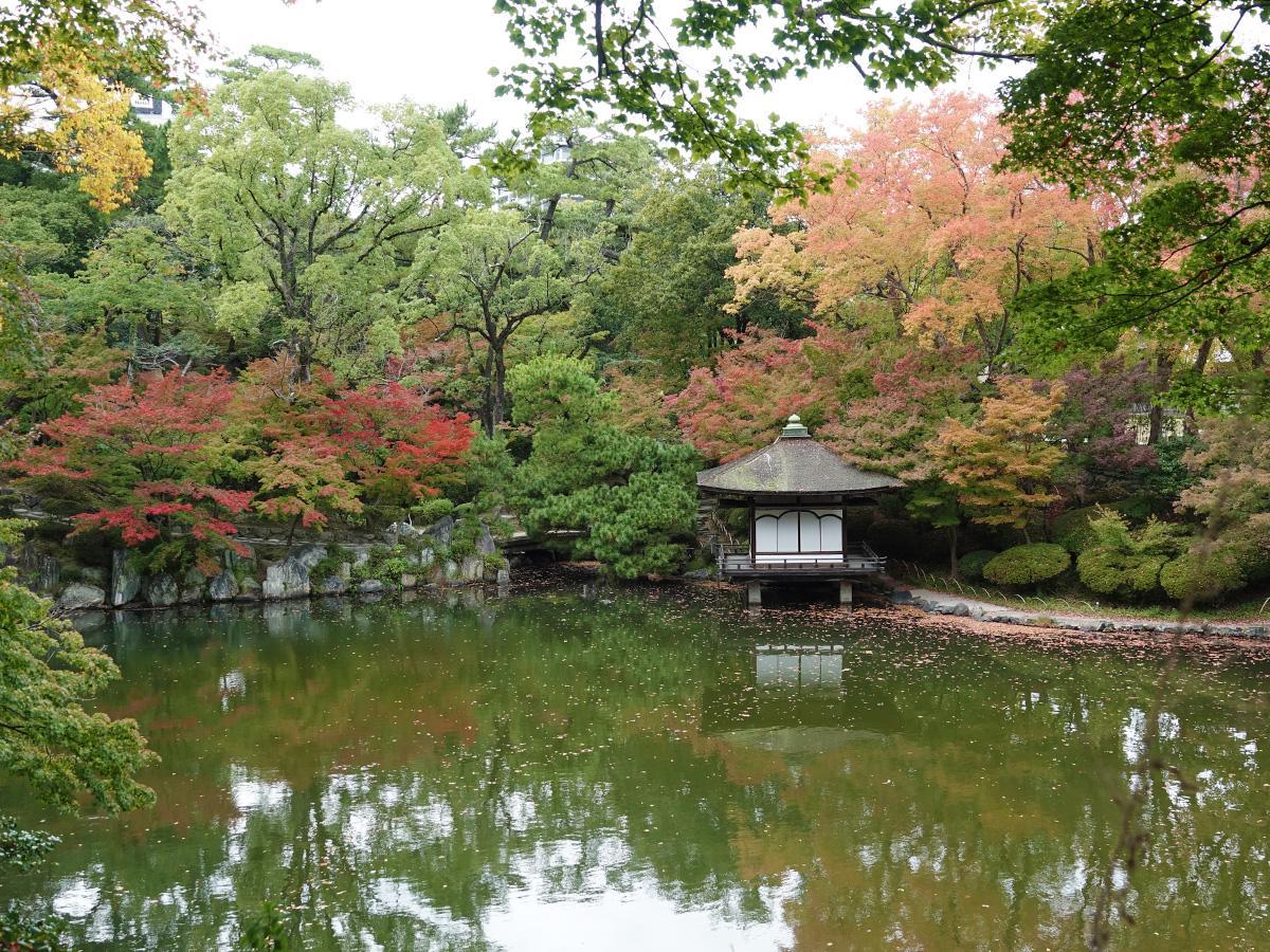 木々の葉が色づき始めた紅葉渓庭園(11月11日撮影)