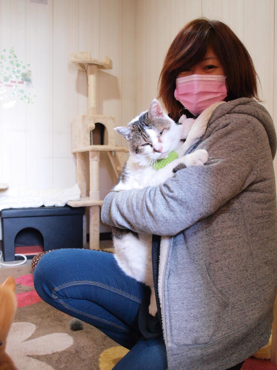 保護猫カフェ「猫の道草」オーナーの吉田藍さんと白血病キャリアの大ちゃん