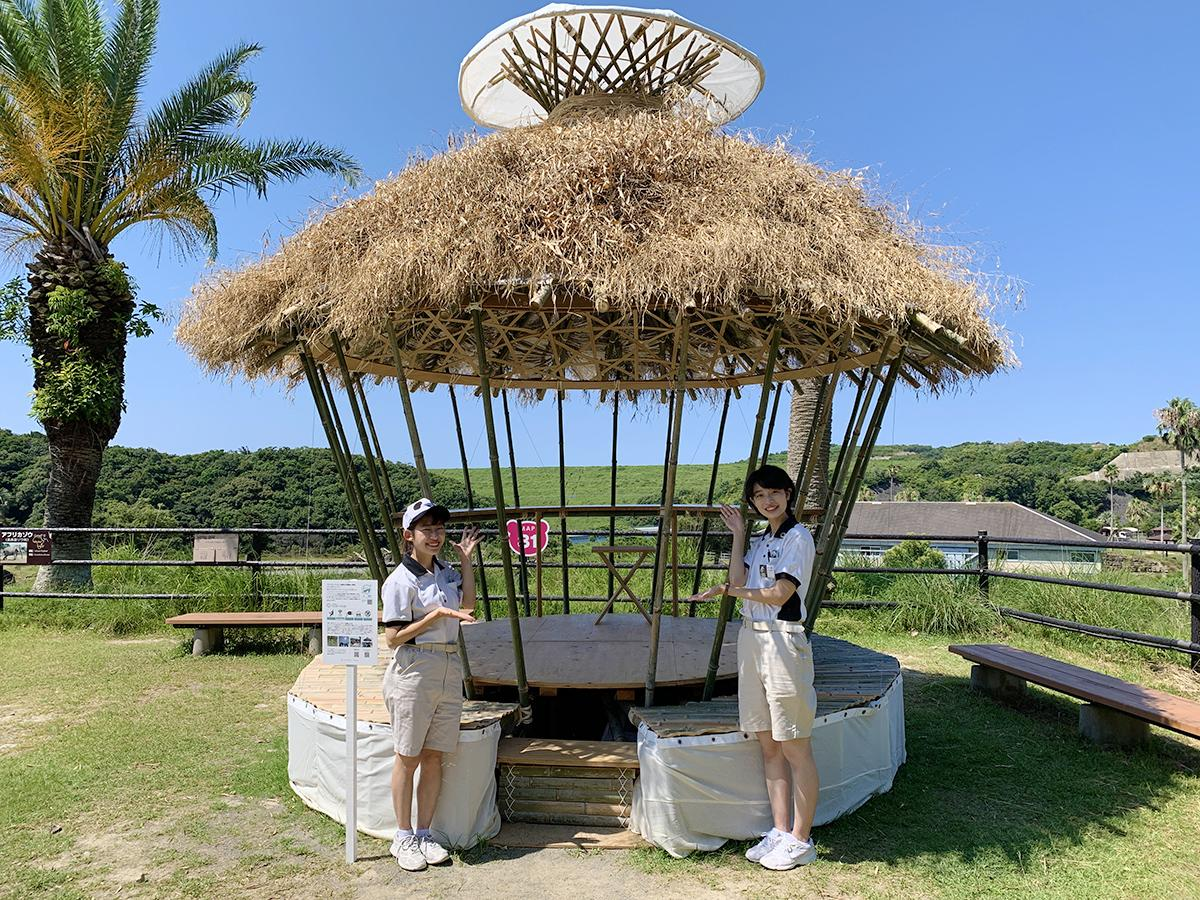 サファリワールド内に設置された 「パンダバンブーモバイルワーケーションスポット」