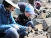 和歌山で第20回「恐竜をさがせ」 化石採集イベントに定員の10倍を超える応募