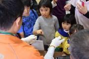 屋久島に移動博物館 鹿児島県立博物館から標本や剥製ずらり、体験イベントも