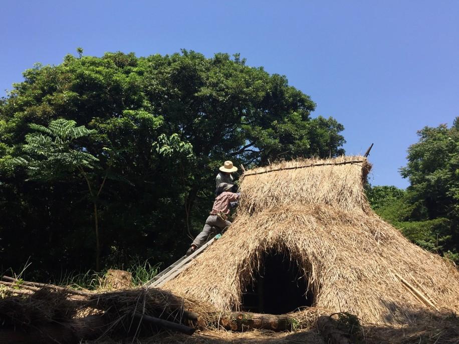 照葉樹の森の中に復元された竪穴式住居