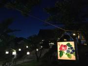 屋久島の伝統行事「六月灯」 色とりどりの灯籠が夜の神社と寺彩る