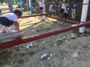 校庭の遊具で遊ぶ一湊児童クラブの子どもたち