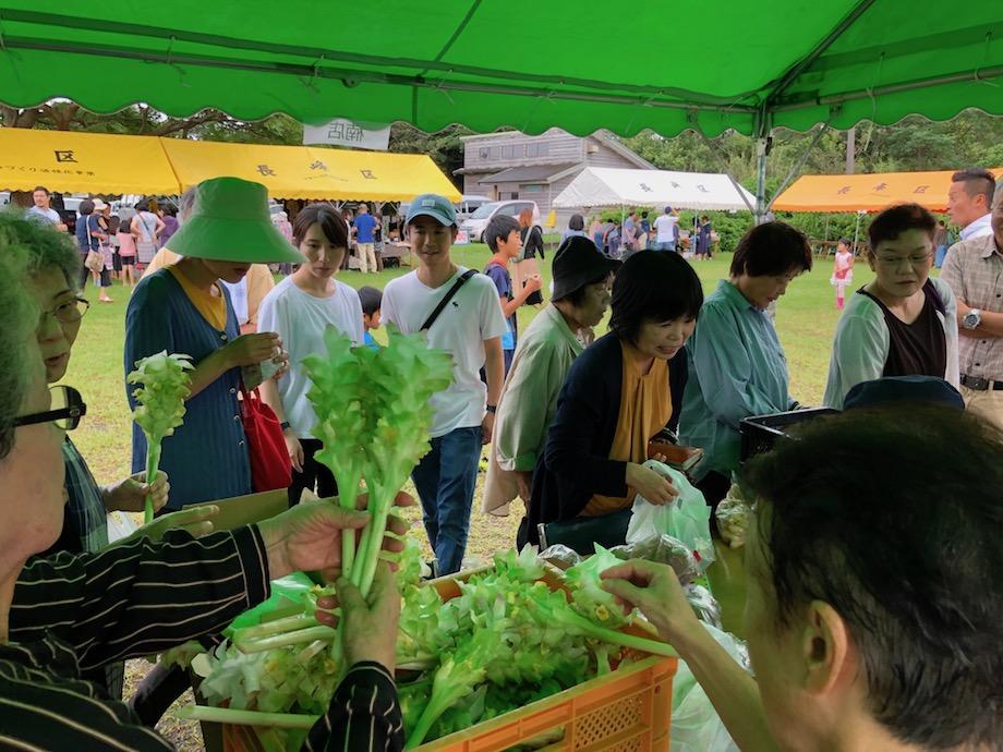 人気の高い無農薬野菜の販売