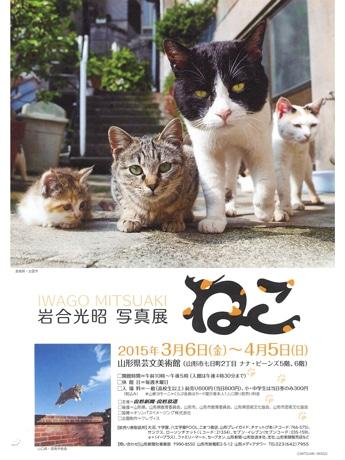 3月6日から開催される「岩合光昭写真展~ねこ~」