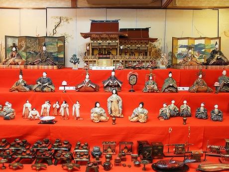 座敷に整然と並べられたひな人形