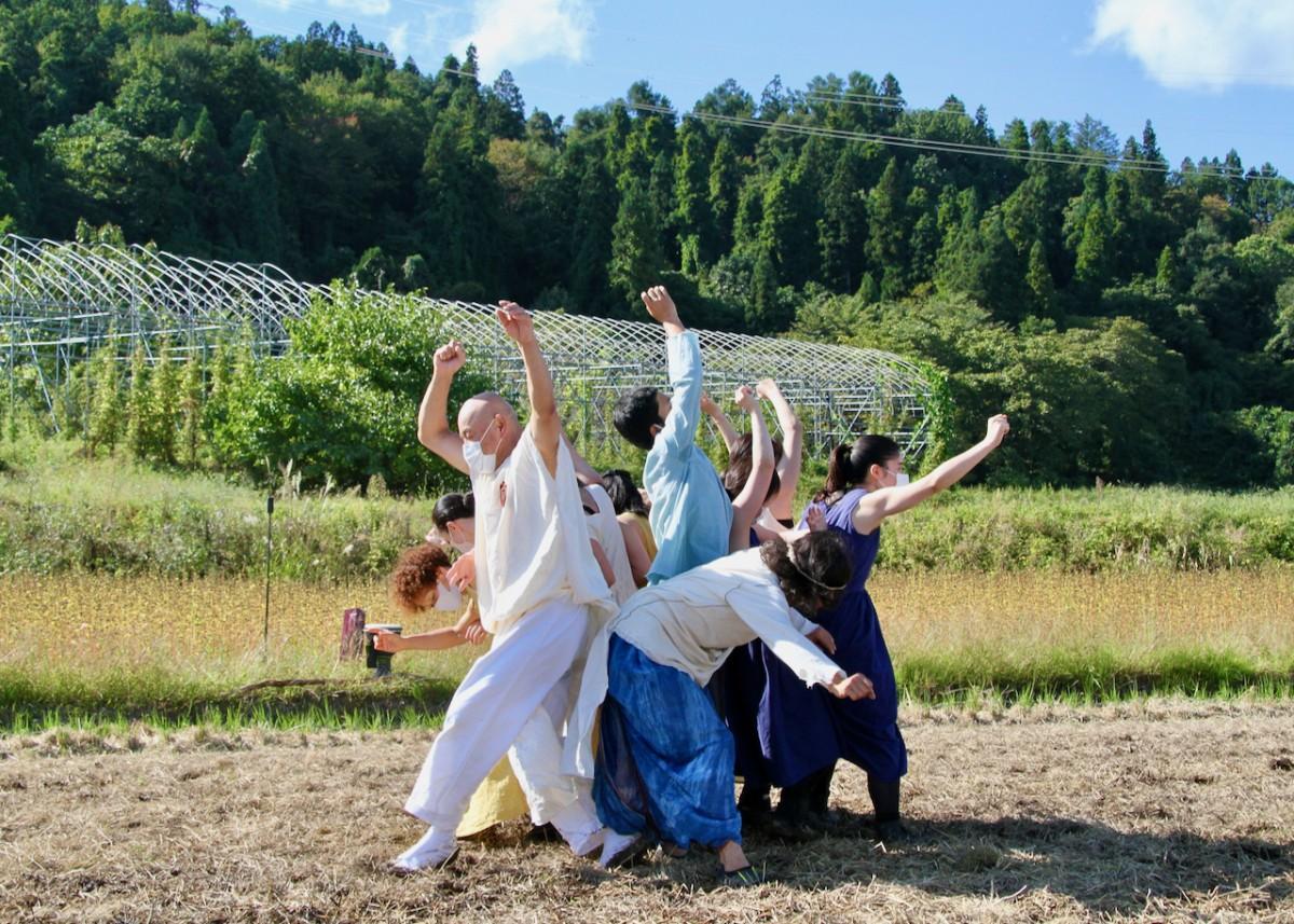 稲刈り後の水田でコンテンポラリーダンスを披露する「ダンススペース」メンバー