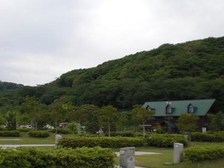 ヒメボタルの見ごろが近づく竜王山