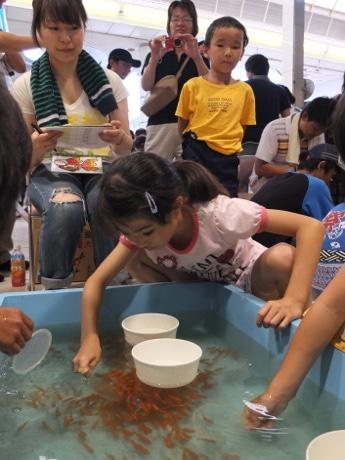 山口市中心商店街で行われた「全国金魚すくい選手権」予選大会