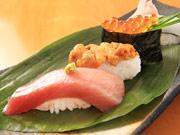 山陽小野田にすし割烹「汐菜」 職人歴25年の料理人、県産魚メーンに