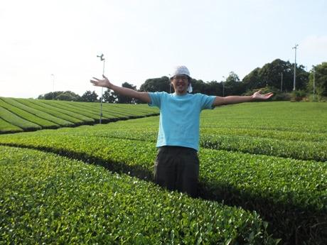 「今年の茶葉は良い出来」と笑顔を見せる才木さん