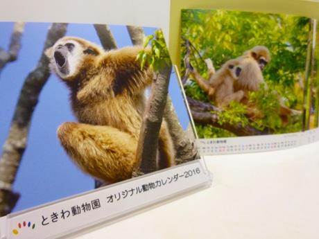 まとめ買いする客もいる「オリジナル動物カレンダー」