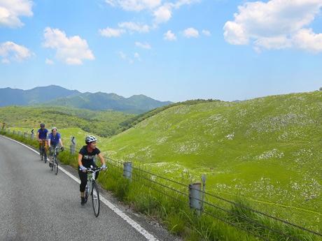 秋吉台では雄大な自然を眺めながらサイクリングできる