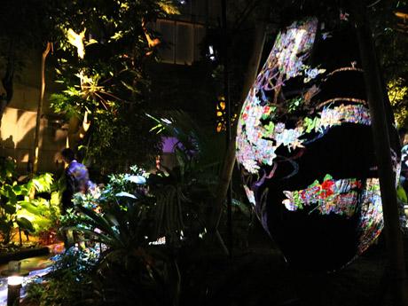デジタルアートイベント「世界を旅する植物に住まう生き物たち」
