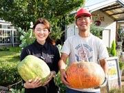 山陽小野田の農場「花の海」で秋の収穫祭 巨大カボチャで「ボーリング」も