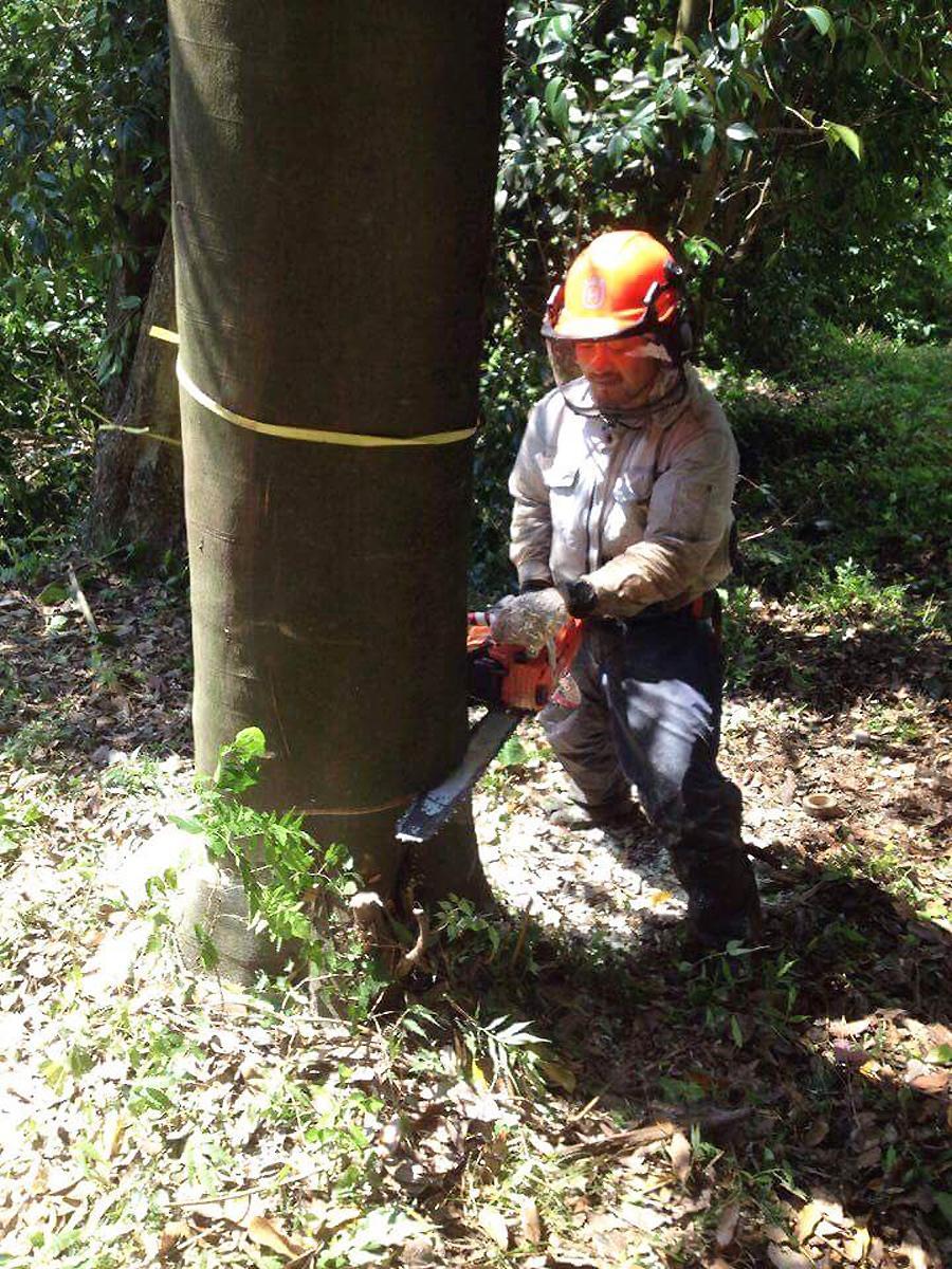 出場者でもある「林業共同体 山林舎」の熊谷友敬代表が作業する様子