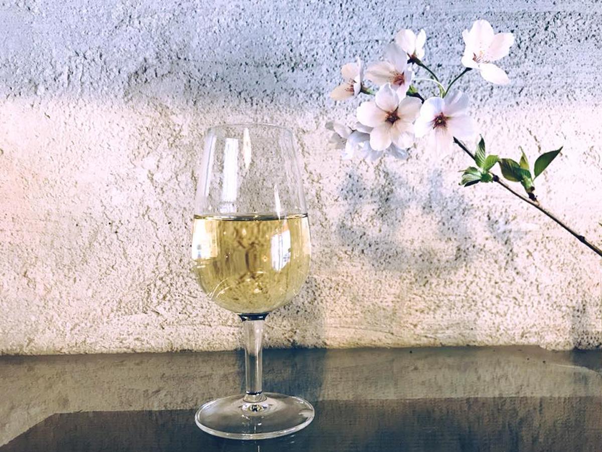 ワイン業者が厳選した銘柄が味わえる