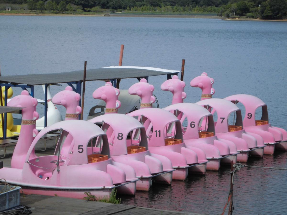 常盤湖にある「スワンボート」を活用